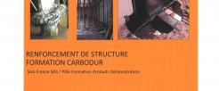 Renforcement plats Carbone 1